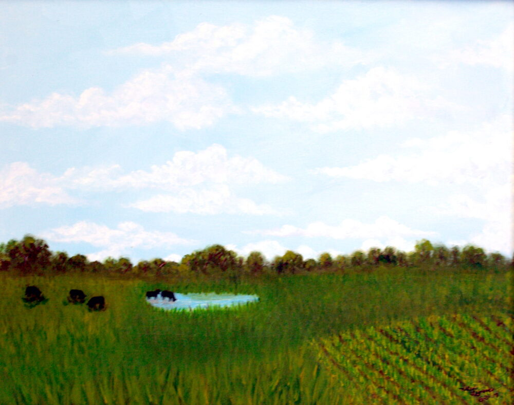 Big Sky Over Meadow Pond by Helen Lyness