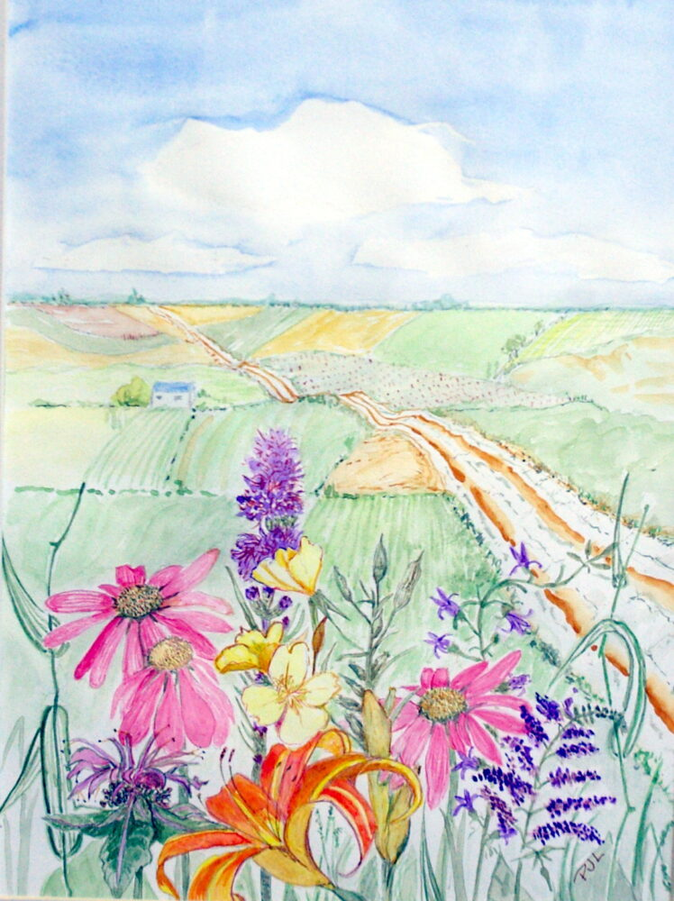 Iowa Flowers by Phyllis J. Lance