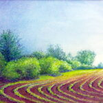 Bean Field by Rose Korty