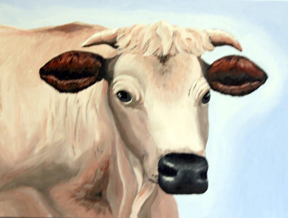 White Cow by Julia DeValk