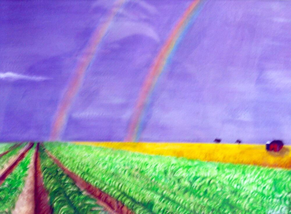 Double Rainbow by Doug Behrendt